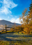 Wooden fence near forest in mountains Stock Images