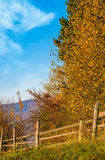 Wooden fence near forest in mountains Stock Photos