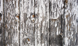 Wooden fence with obsolete paint Royalty Free Stock Photography