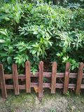 Wooden fence. In the park royalty free stock image