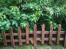 Wooden fence. In the park royalty free stock images