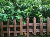 Wooden fence. In the park stock photography