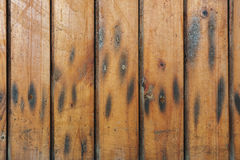 Wooden fence. Pattern of wooden fence in columns stock photo