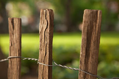 Wooden Fence. This is a picture of three posts in a wooden fence Stock Images