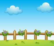 The wooden fence with plants Royalty Free Stock Photo