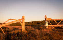 Wooden fence post Royalty Free Stock Photo