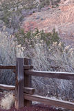 Wooden fence post and tall yellow grasses in Zion's National Park. In the winter time Stock Images
