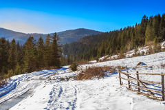 Wooden fence by the road winter forest in mountains. Wooden fence near the road leading to the forest in the winter mountains in good weather Royalty Free Stock Photos