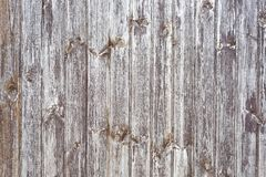 Wooden fence with Rustic plank brown bark wood backgrounds, Abstract background Image. Rustic plank brown old bark wood textured photo. Abstract background Image royalty free stock photography