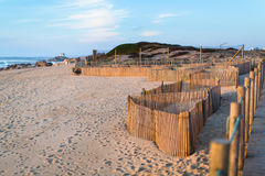 Wooden fence on sand dunes at Miramar beach on the Atlantic coast Stock Photo