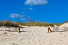 Wooden fence at sand ocean beach in Portugal Stock Photography