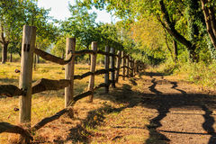 Wooden fence sheds shadow. Het Vinne, Zoutleeuw, Flanders, Belgi. Wooden country fence along a meadow sheds shadow on a path under trees. Het Vinne, Zoutleeuw Stock Photos