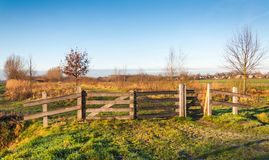Wooden fence in a small Dutch park Royalty Free Stock Image
