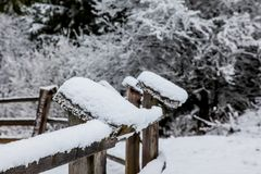 Wooden fence with snow Royalty Free Stock Image