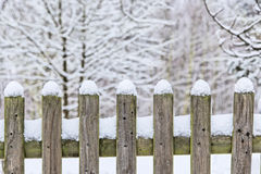Wooden fence in snow with trees Stock Images