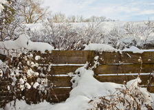Wooden fence with snow on winter Royalty Free Stock Images