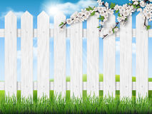 Wooden fence spring tree grass. Pointed fence, lawn, blooming tree branch and green grass. Vector spring illustration Stock Photography
