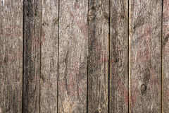 Wooden fence texture. Grey wooden planks with red shade Stock Photos
