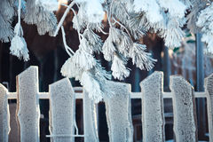 Wooden fence under frost Stock Photography