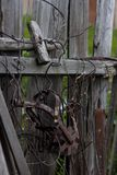 Wooden fence in the village royalty free stock images