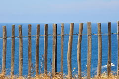 Wooden fence on the waterfront Stock Photography