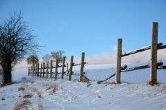 Wooden fence in winter with snow and blue sky, tree on the left Royalty Free Stock Photo