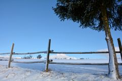 Wooden fence in winter with snow and blue sky, tree on the right Royalty Free Stock Images
