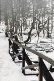 Fence in wintry park. Wooden fence in wintry park Stock Image