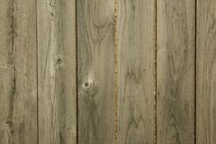 Wooden fence with wood grain. A wooden fence with light peaking through the gaps. This also is high quality and may be used for textures and backgrounds royalty free stock image