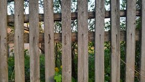 Wooden fence. wooden background. texture.  Royalty Free Stock Image
