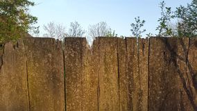 Wooden fence. wooden background. texture.  Stock Photos