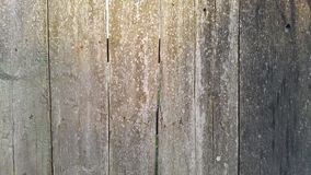 Wooden fence. wooden background. texture.  Stock Images