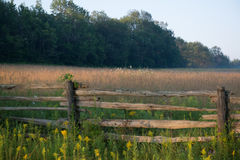 Wooden Fence Yellow Wildflowers Autumn Field. Wooden fence autumn outdoor landscape photo. Field in the countryside. Beautiful blue skies and trees in the Stock Image