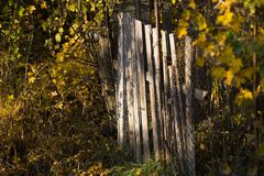 Wooden fencing on Autumn morning Stock Images