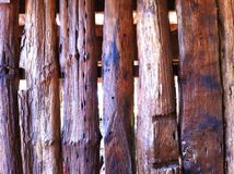 Wooden fencing closeup Stock Image