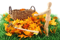 Wooden figure cleanup the garden from autumn leave Stock Photos