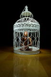 Wooden figurine in a cage Royalty Free Stock Photo