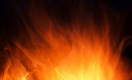 Wooden fire burning. Wooden fire with coals burning on a dark background Stock Photos