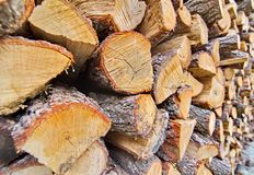 Wooden fire wood logs in a pile Royalty Free Stock Photography