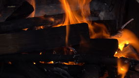 Wooden firewood burns in fire. Many wooden firewood burns in fire closeup stock video