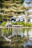 Wooden Flamingos Stock Images