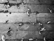 Wooden floor background Royalty Free Stock Photography