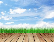 Wooden floor with grass Stock Image