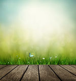 Wooden Floor, Grass, Flower And Butterfly Royalty Free Stock Image