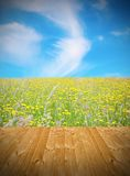 Wooden floor and green field Stock Images
