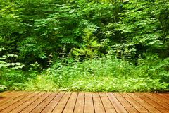 Wooden floor in a green forest. Spa, welness, nature Stock Images
