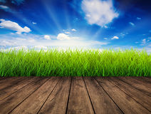 Wooden floor with green grass Stock Images