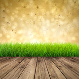 Wooden floor with green grass Stock Photography