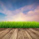 Wooden floor with green grass Royalty Free Stock Photos