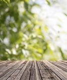 Wooden floor and green plants Stock Images